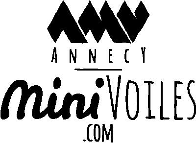 Ecole formation stage de parapente et minivoile